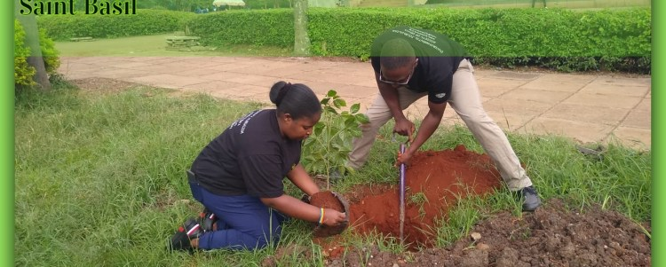 Let us Plant and Grow Trees