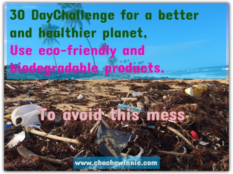 30 DayChallenge for a better and healthier planet, Use eco-friendly and biodegradable products.