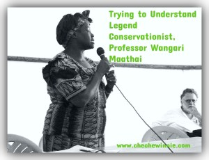 Trying to Understand Legend Conservationist, Professor Wangari Maathai