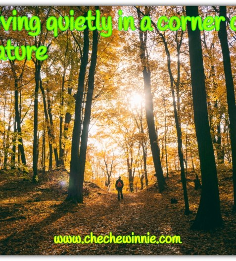 Living quietly in a corner of nature