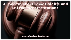 A Concern About Some Wildlife and Environment Institutions