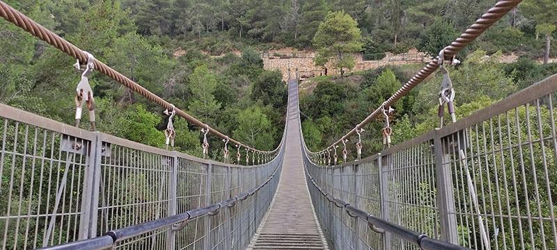 הגשר הראשון בפארק הגשרים בנשר
