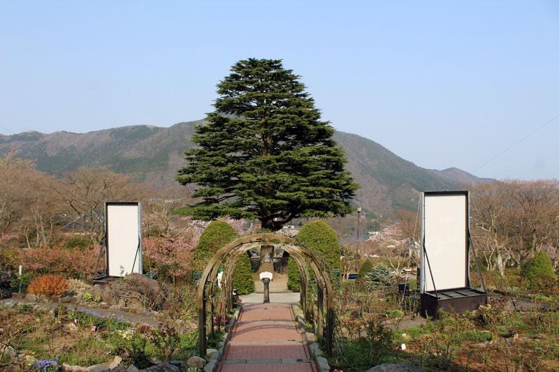 האקונה יפן