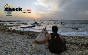 טיולים עם כלבים - איך לשמור על הכלב בטיול