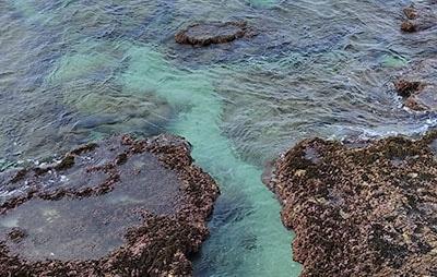חוף הים בראש הנקרה - אכזיב