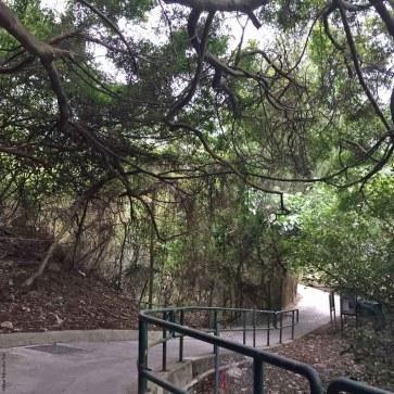 Walking uphill on the Lamma Island Famly Walk Trail - Hong Kong, China