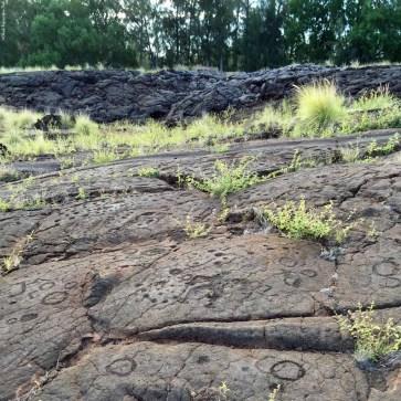 Waikoloa Petroglyph Preserve - Big Island, Hawaii, USA