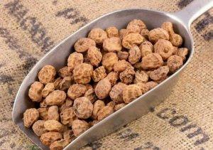 "Chufa ""tiger nut"" beans"