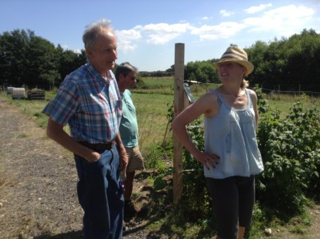 Chedgrave Allotments - local grower
