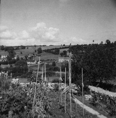 "Ballingers Hill, taken from the garden of ""Fairview"" (nowadays known as ""Glovers Cottage""), Cheap Street - Martin Cook."