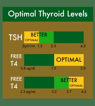 thyroid chart CHEEF