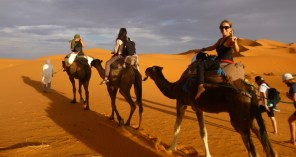 Camel ride through Sahara Desert, Morocco