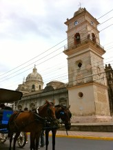 horse drawn carriages on the street Granada Nicaragua, Iglesia de La Merced