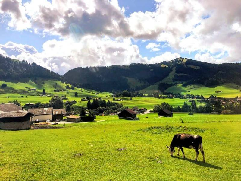 Golden pass train Switzerland Route