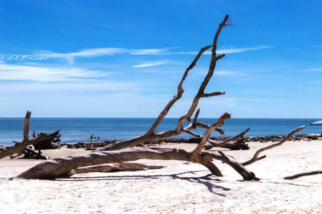 Jekyll Island - Most Beautiful Islands In The United States