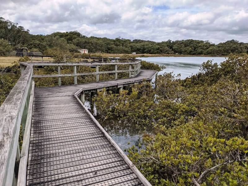 Rangtito Island - Beautiful Islands In New Zealand