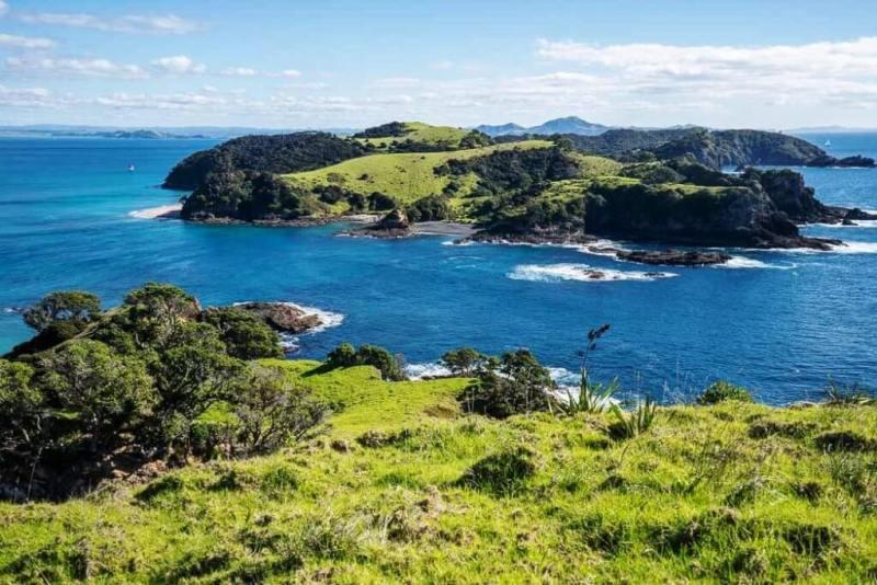 Urupukapuka - Beautiful Islands In New Zealand