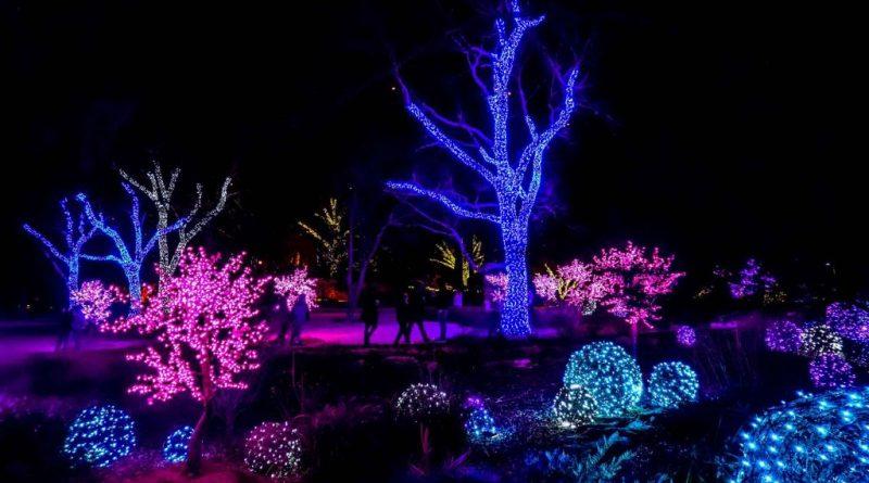 Cheekwood Lights, Nashville - Tennessee In Winter