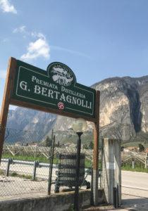 Bertagnoli sign