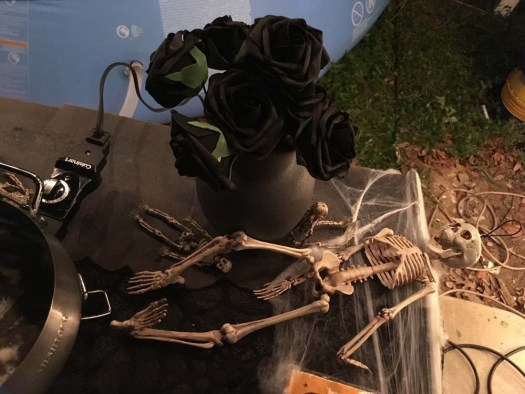 plastic skeleton and vase with black roses - halloween decorations