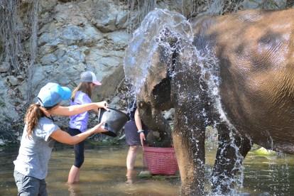 Mom splashing water on Thong Dee