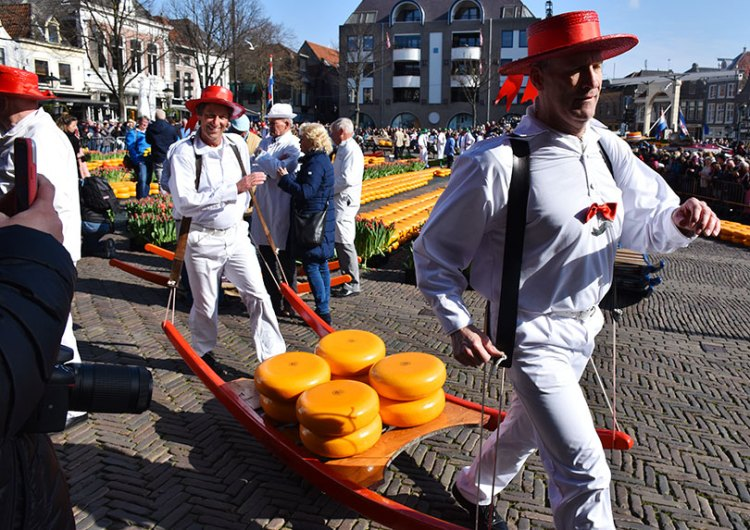 Cheese market at Alkmaar