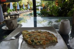 best spinach omelette ever