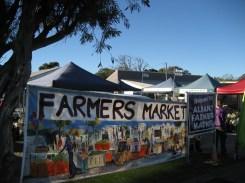 Farmers market in Albany