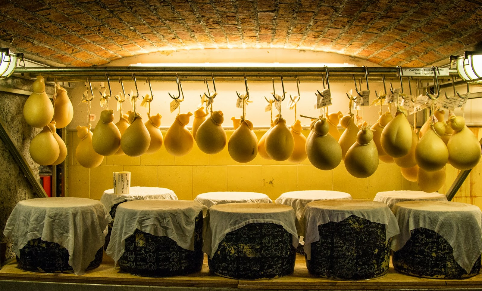 Italian cheese cheese underground im not going to lie when third generation affineur carlo fiori guffanti led us through a glass door down a series of steps and into the underground planetlyrics Images