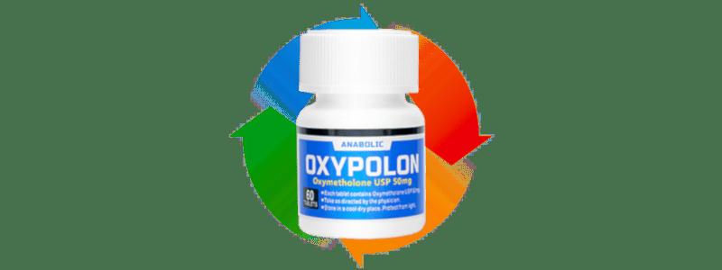オキシポロンのサイクル