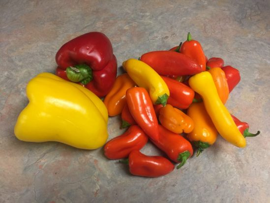 Bell Peppers - large and small