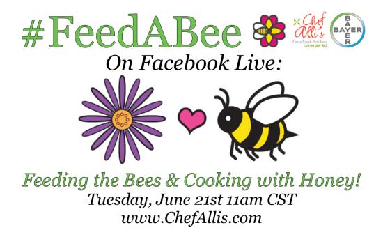Feed a Bee Ad