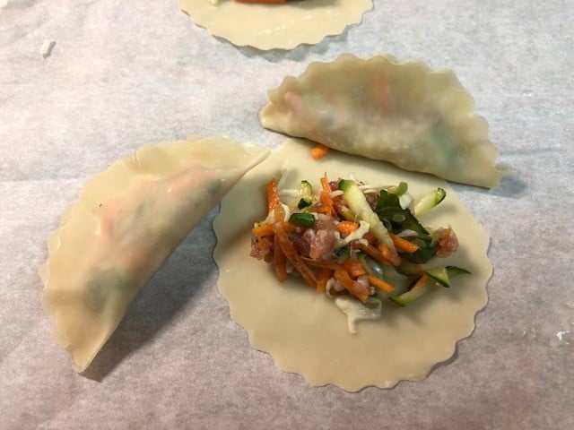 Homemade Electric Pressure Cooker Potstickers