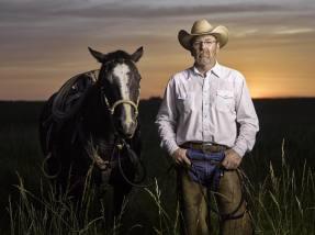 My Cattleman