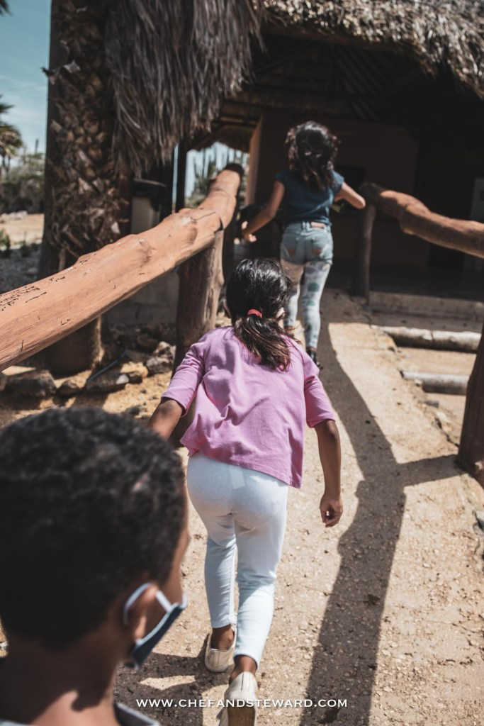 Kids run in to the Ostrich Farm eager to tour and feed the ostriches in Aruba
