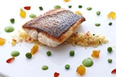 ang fish2 l