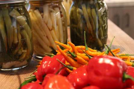 Pickled green beans, yellow wax beans and an assortment of chillies