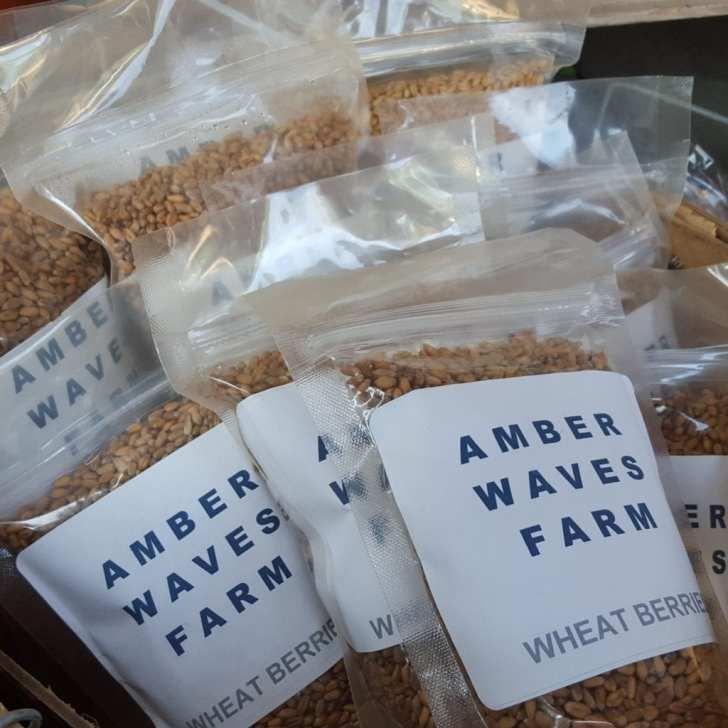 Amber Waves Farm local wheat berries