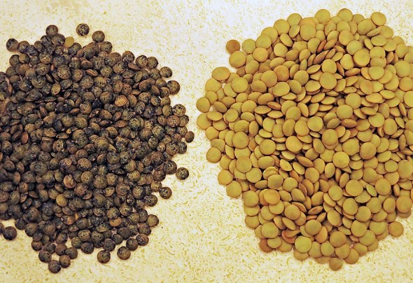 Le Puy lentils on the left, regular lentils on the right