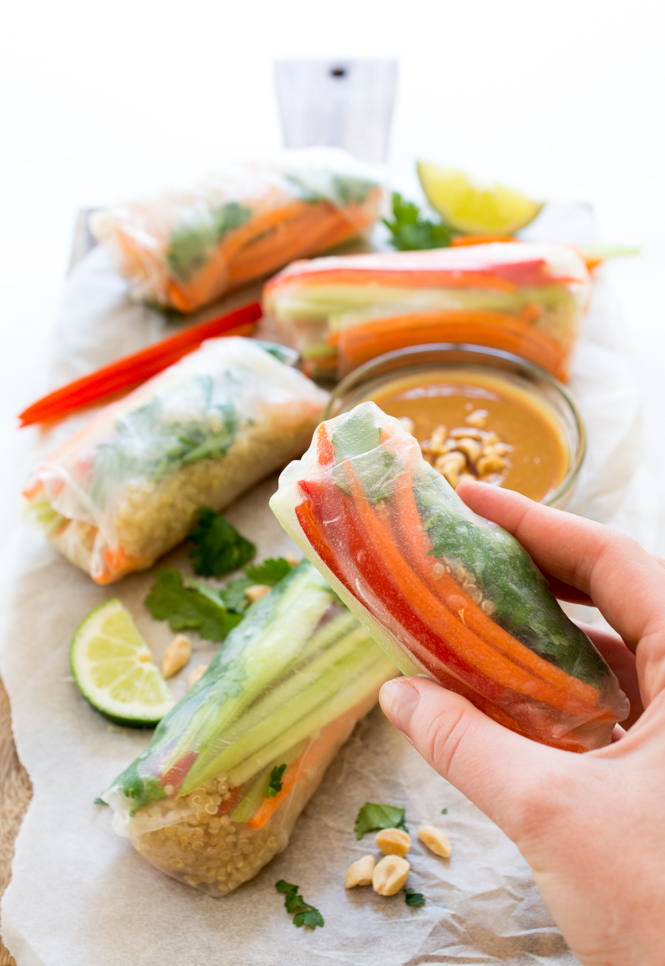 Shrimp Vegetable Spring Rolls | chefsavvy.com