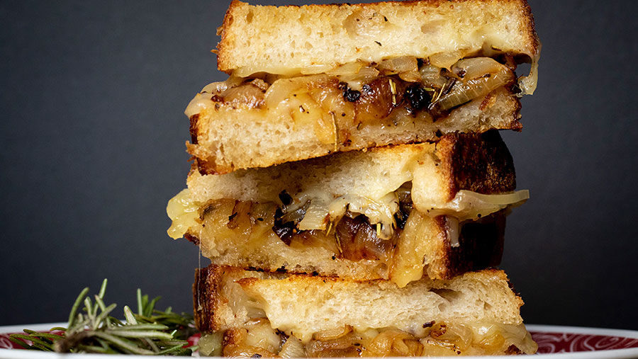 Rosemary Caramelized Onion Grilled Cheese