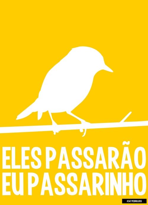 ELES-PASSARAO-EU-PASSARINHO