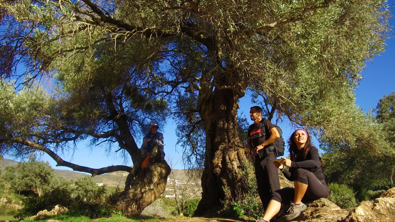 Trekking,-Rif,-Marrocos,-ponte-de-deus