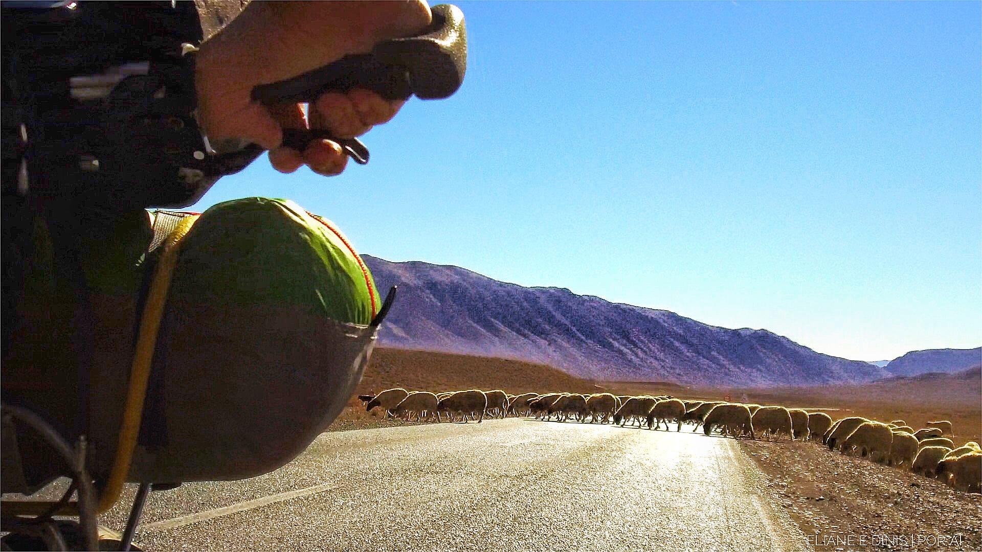 Cicloturismo em Marrocos