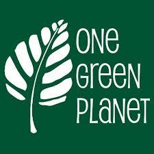 One-Green-Planet-Logo   Healthy gf Asian