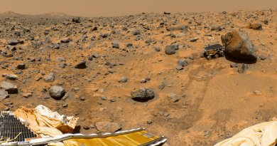 Бывший ученый NASA заявил о существовании следов жизни на Марсе