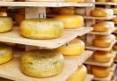 Французские монахи объявили экстренную распродажу трех тонн сыра