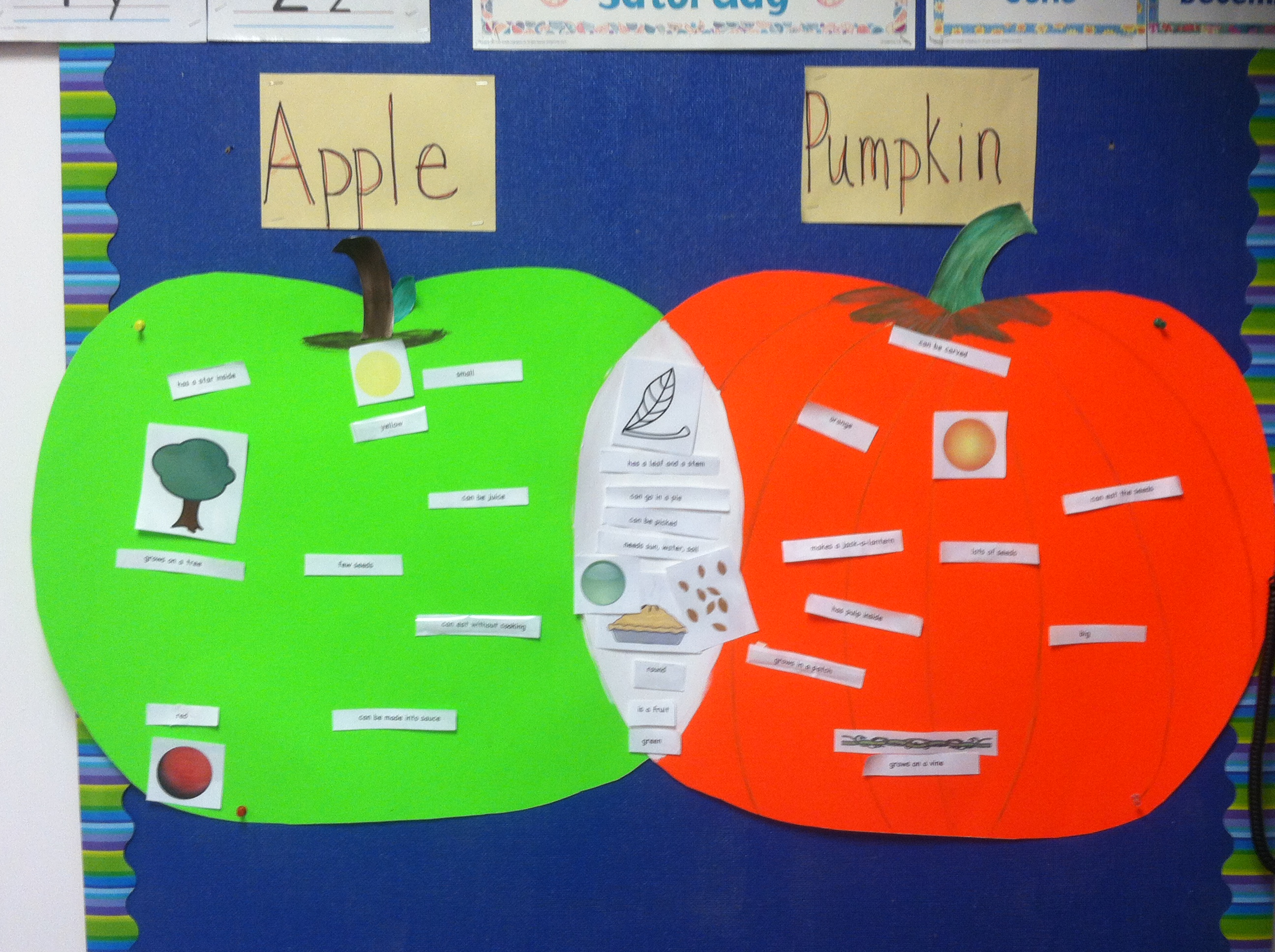 Pumpkins Them Pumpkin Diagrams Homeschool Pumpkin Pumpkin Charts