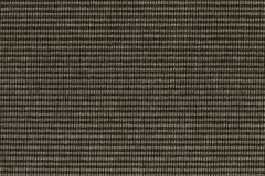 Alluring Stripe Cocoa/Ash DS104