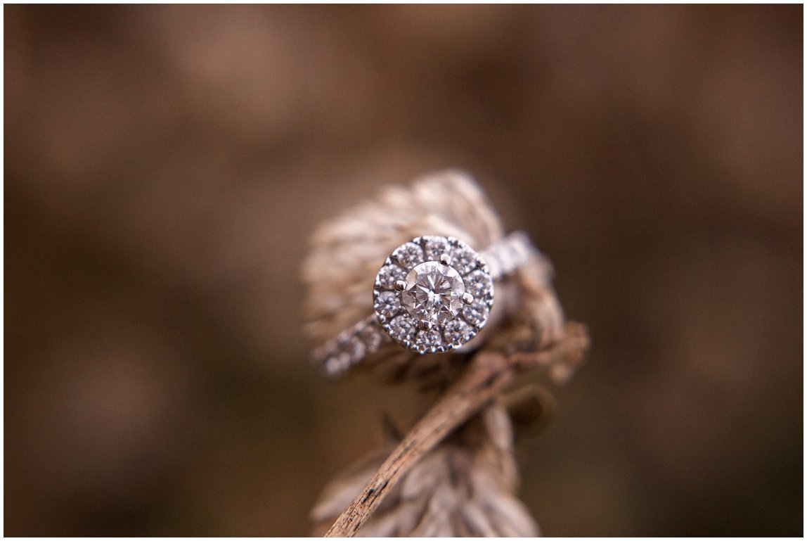Lavender Fields Milton DE Engagement